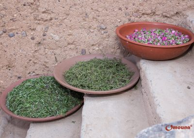 omouna-marokko-2016-IMG_1652